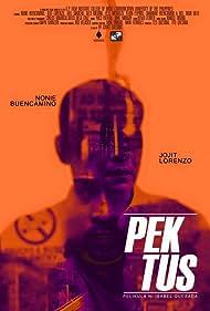 Nonie Buencamino and Jojit Lorenzo in Pektus (2016)