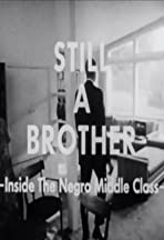 Still a Brother: Inside the Negro Middle Class