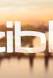 Zibb Poster