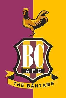 Bradford City A.F.C. Picture