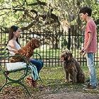 Gabriel Bateman and Madison Horcher in Think Like a Dog (2020)