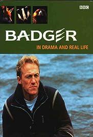 Badger Poster