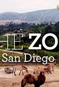 Primary photo for The Zoo: San Diego