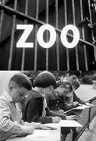 Zoo (1961)