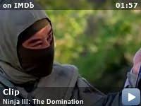 ninja 3 the domination torrent