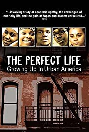 The Perfect Life Poster