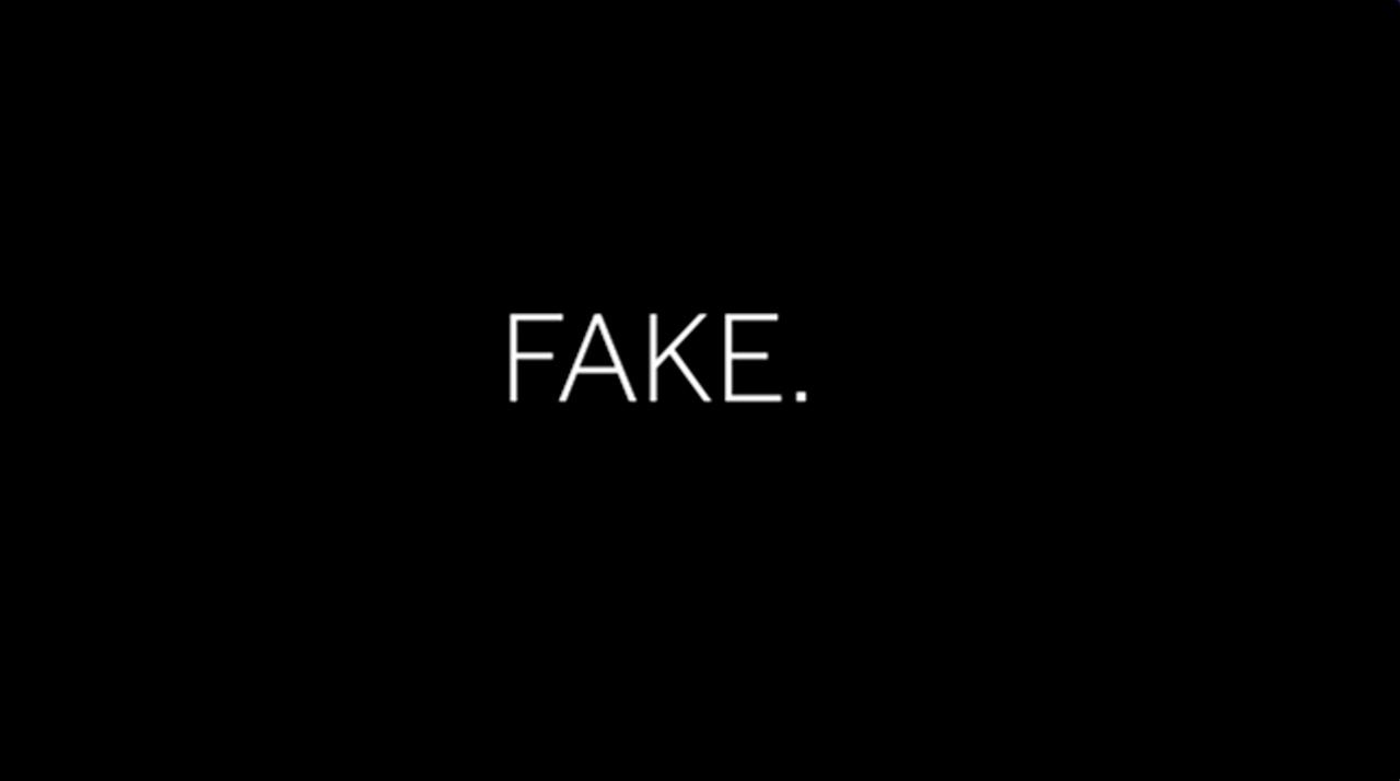 Fake (2018)