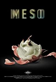 Meso Poster
