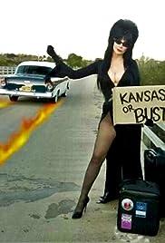 The Elvira Show Poster