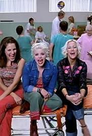 Dixie Chicks: Goodbye Earl Poster