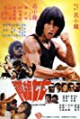 Challenge of the Tiger (1980) Poster