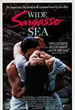 Wide Sargasso Sea