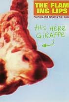 The Flaming Lips: This Here Giraffe