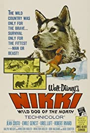 Nikki, Wild Dog of the North Poster
