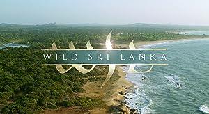 Where to stream Wild Sri Lanka