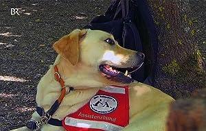 Partner mit Supernase - Hunde im Einsatz für den Menschen