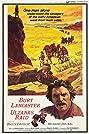 Ulzana's Raid (1972) Poster