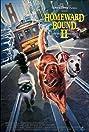 Homeward Bound II: Lost in San Francisco (1996) Poster
