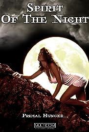 Huntress: Spirit of the Night Poster