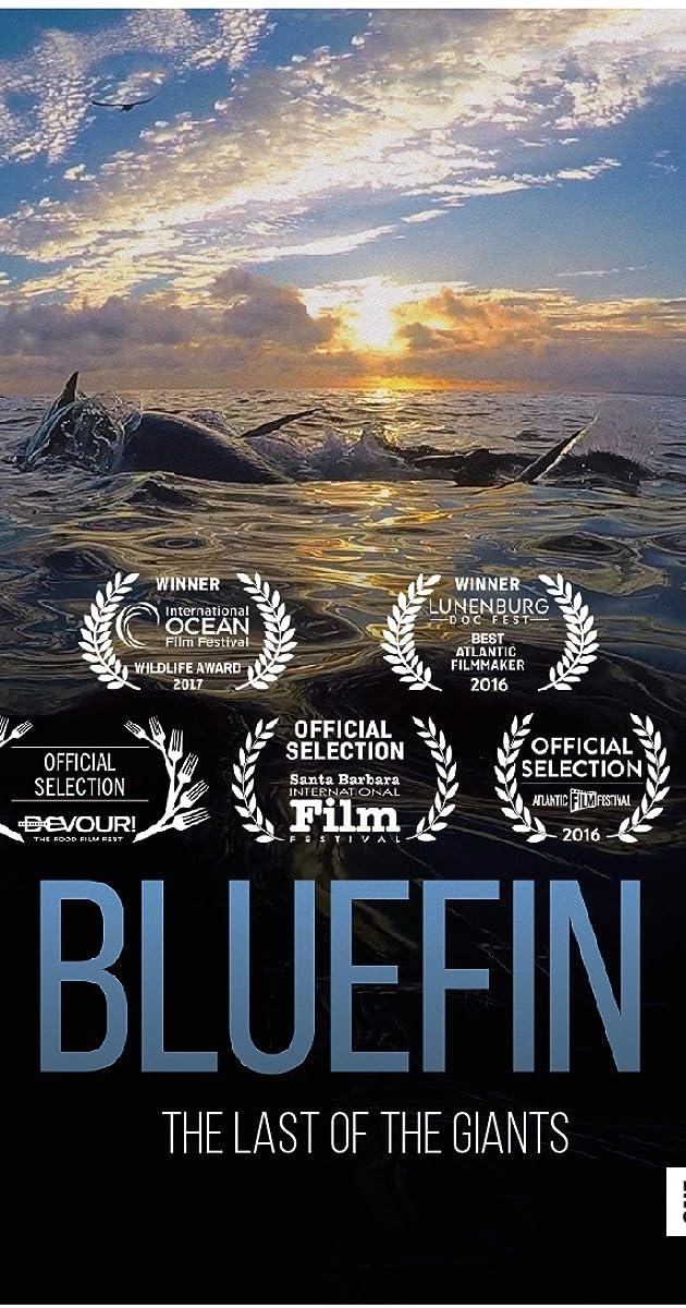 Subtitle of Bluefin