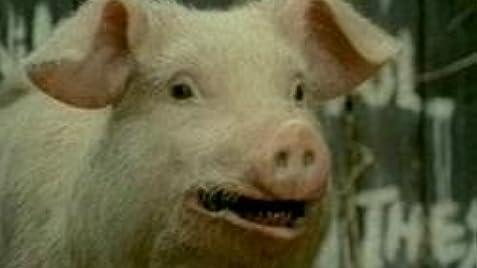 Animal Farm (TV Movie 1999) - IMDb