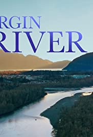 Virgin River (2019-)
