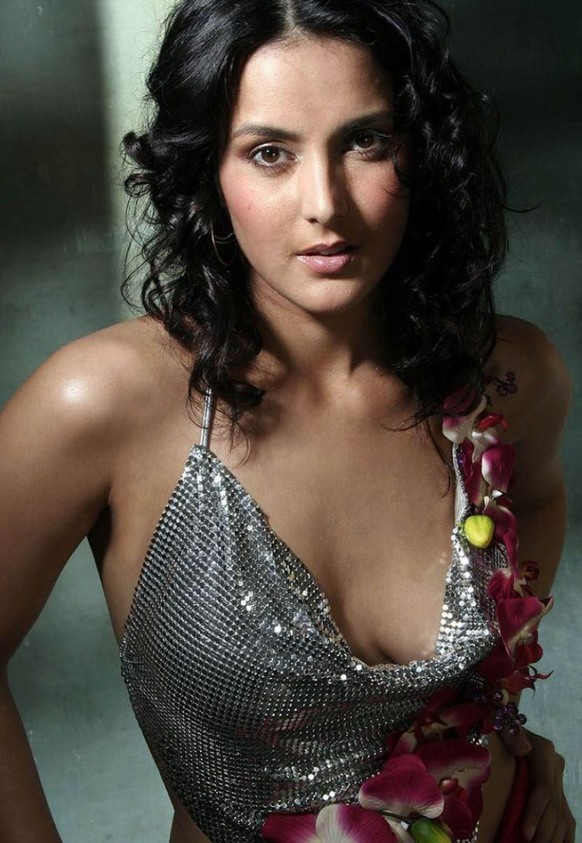 Tulip Joshi nude (27 pictures) Sexy, iCloud, braless