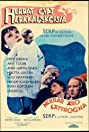Herrat ovat herkkäuskoisia (1939) Poster