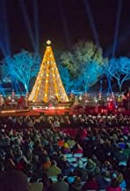 The National Christmas Tree Lighting