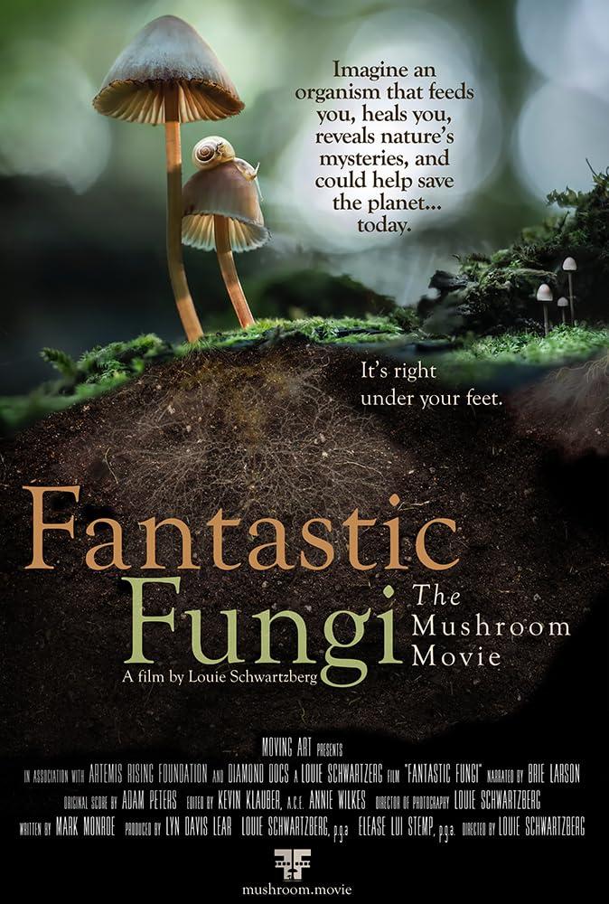 美妙蕈菇   awwrated   你的 Netflix 避雷好幫手!
