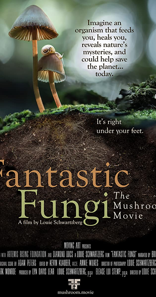 Subtitle of Fantastic Fungi