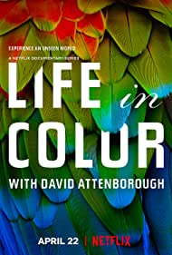 Life in Colour (2021)