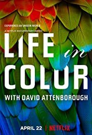 Life in Colour Poster