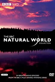 Natural World Poster