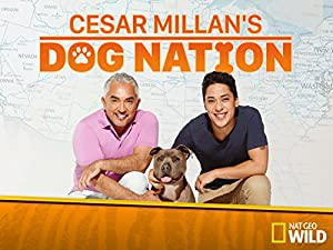 Where to stream Cesar Millan's Dog Nation