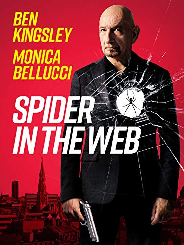 Spider in the Web (2019) English 480p HDRip 350MB