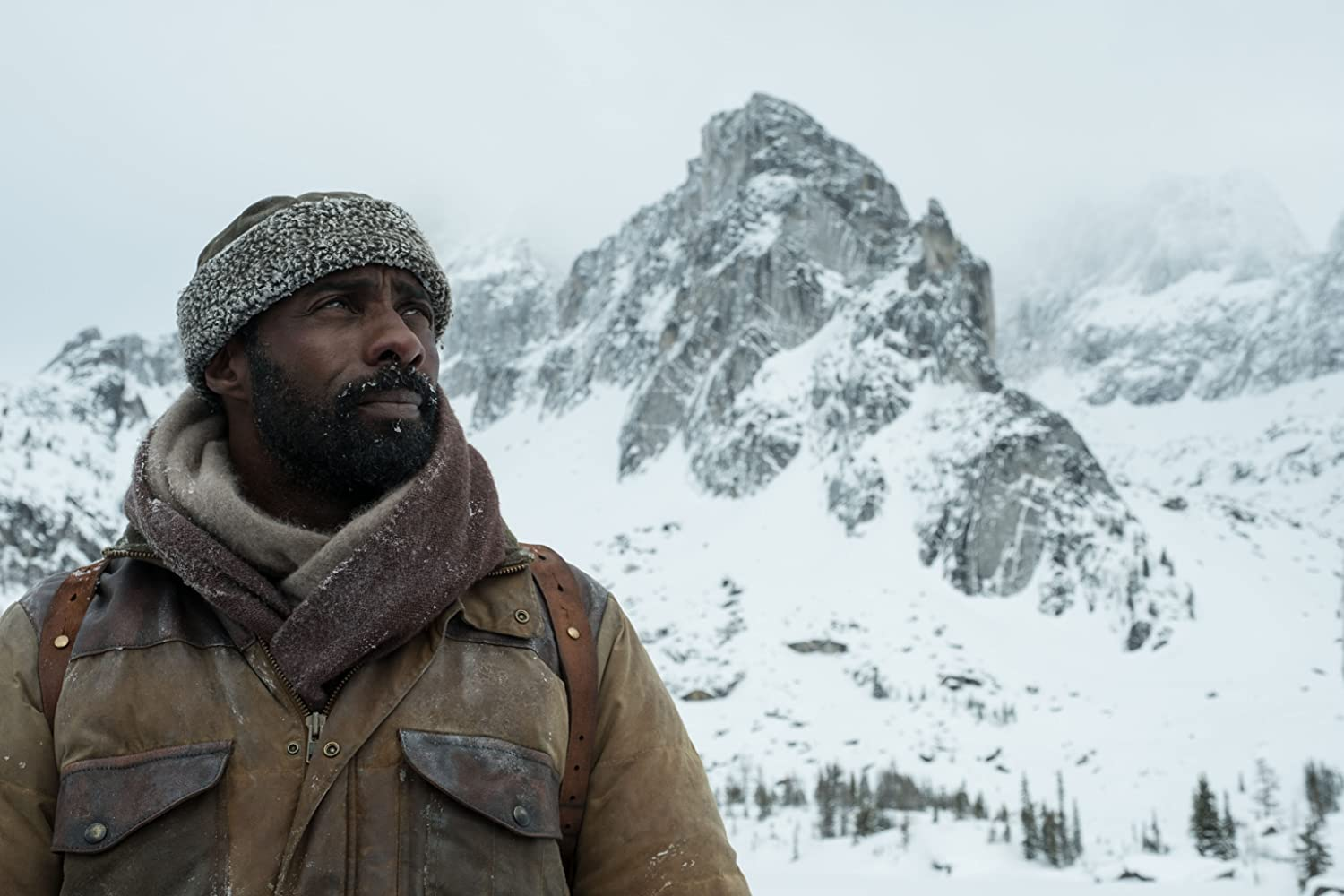 Idris Elba in The Mountain Between Us (2017)