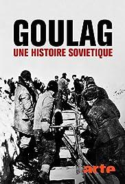 Gulag: The History