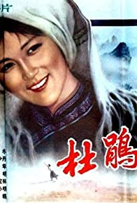 Primary photo for Du Juan sheng sheng