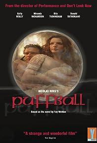 Primary photo for Puffball: The Devil's Eyeball