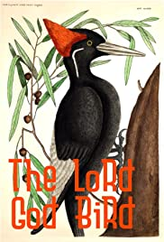 The Lord God Bird Poster