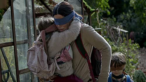 IMDbrief: What You Missed in 'Bird Box'