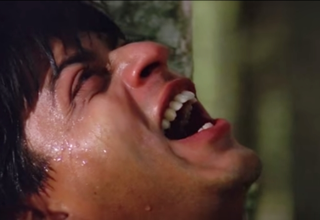 roles of SRK Darr