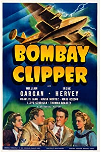 Bombay Clipper USA