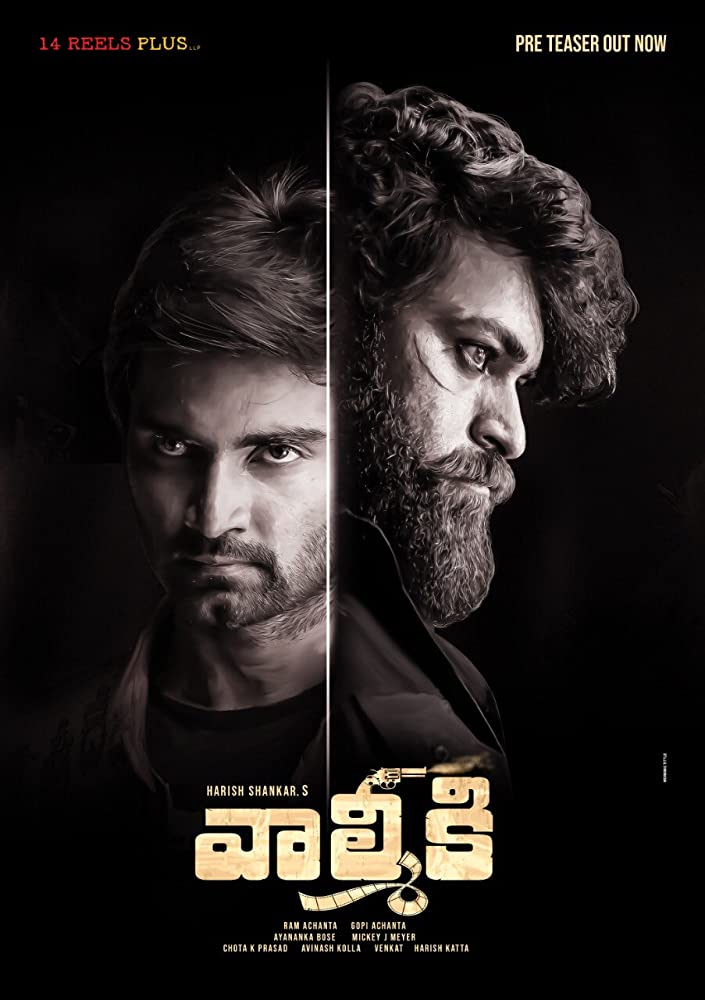 Gaddalakonda Ganesh (Valmiki) 2019 Telugu 430MB pDVDRip Download