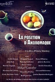 La position d'Andromaque (2017)