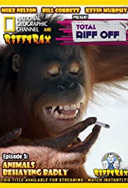 Animals Behaving Badly Poster