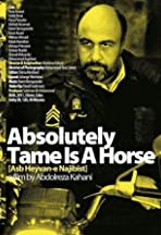 Absolutely Tame Is a Horse