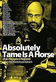 Asb heyvan-e najibi ast(2011) Poster - Movie Forum, Cast, Reviews