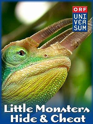 Little Monsters – Hide & Cheat